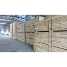 Poplar Laminated Veneer lumber For construction