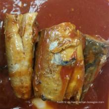 Makrelenfisch in Dosen in Tomatensauce Hot Chili