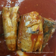 Canned Mackerel Fish In Tomato Sauce Hot Chili