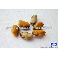 Meeresfrüchte gefrorenes gekochtes Miesmuschelfleisch