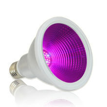 LIWEIDA  12W  30 degree E26/E27/B22 Base IP65 LED Par 30 Grow Light For Young Leaves and Flowers Growth