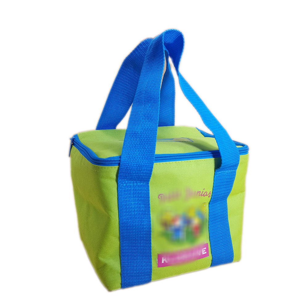 School Children Tote Carry Lunch Cooler Bag