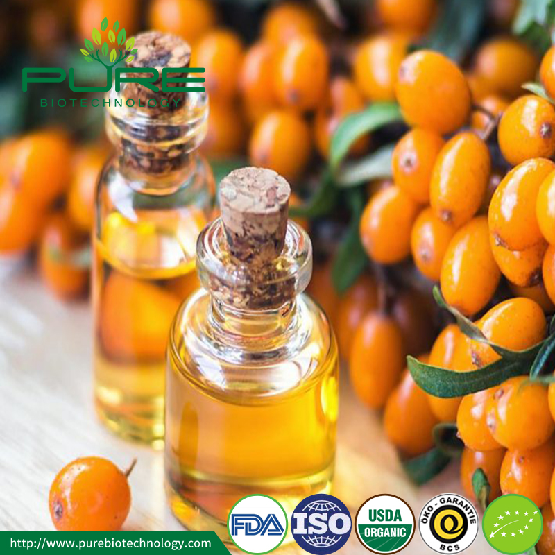 Cold Press Organic Sea Buckthorn Berry Seed Oil