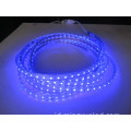 Tegangan tinggi 50m Per Roll 5050 AC110V LED Tape Light