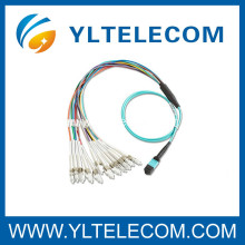 2.0mm OM3 Fiber Optic Patch Cord 4 / 8 / 12 / 24 Fiber MPO