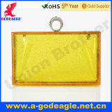 New arrival fashion acrylic clutch bag with silver powder acrylic