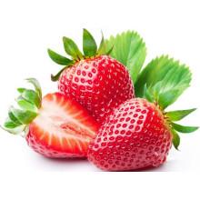 Prix concurrentiel pour la poudre de fraise instantanée de fruit