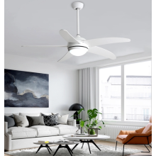 Stylish ceiling fan lights in the living room