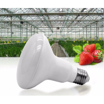 Paddestoel Lamp 12w LED Grow Light