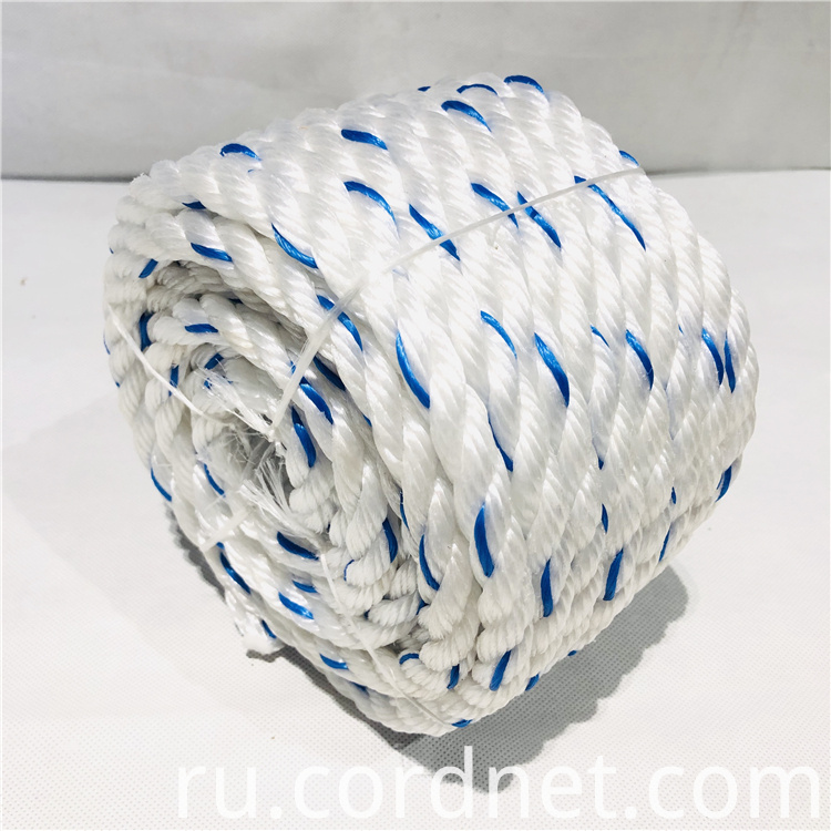 White With Blue Pp Multifilament Rope 1