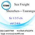 Shenzhen Port LCL Consolidation To Tauranga