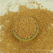 Precio del mijo amarillo de Broomcorn