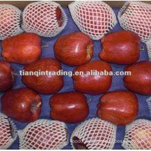 2012 Fresh Huaniu apple
