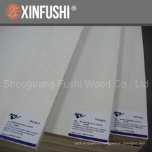 white popalr plywood used for furniture