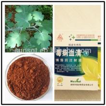 Extracto Plumepoppy del rosa de la fábrica 100% de la Anti-diarrea natural Alcaloide total CAS112025-60-2 del total 60%