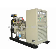 12.5KVA-1250KVA free engry generator, biogas generator