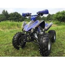 110cc спорта ATV с полной автоматической Gears для детей