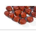 Data orgânica dessecada, fruta chinesa da data, data chinesa secada