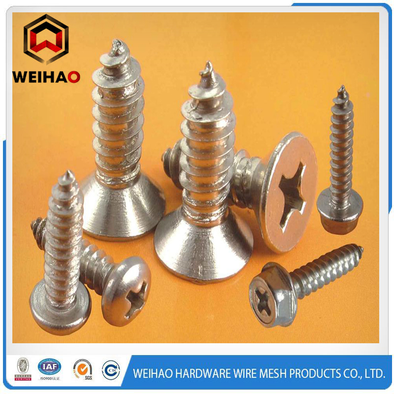 self tapping screw qq