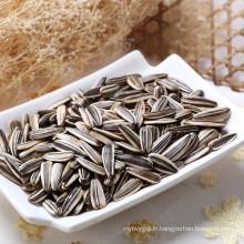 Graines de tournesol chinois communs pour manger