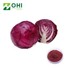 Pigmento em pó natural de repolho vermelho
