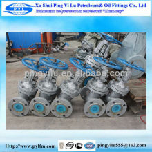 Gost russia standard gate valve packing