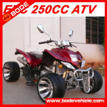 250CC EEC APPROVED QUAD (MC-365)