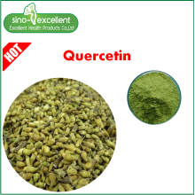High Quality for Berberine, Rutin, Ginseng leaf p.e. ,Green Tea P.e.,plant extract for Sale Quercetin Sophora japonica extract export to Singapore Manufacturers