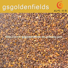 2017 High quality sea buckthorn sell