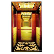 Bon Qulity Luxury Machine RoomLess Passenger Lift a utilisé des ascenseurs à la maison