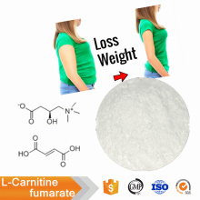 High Quality pure L-Carnitine fumarate powder CAS 90471-79-7