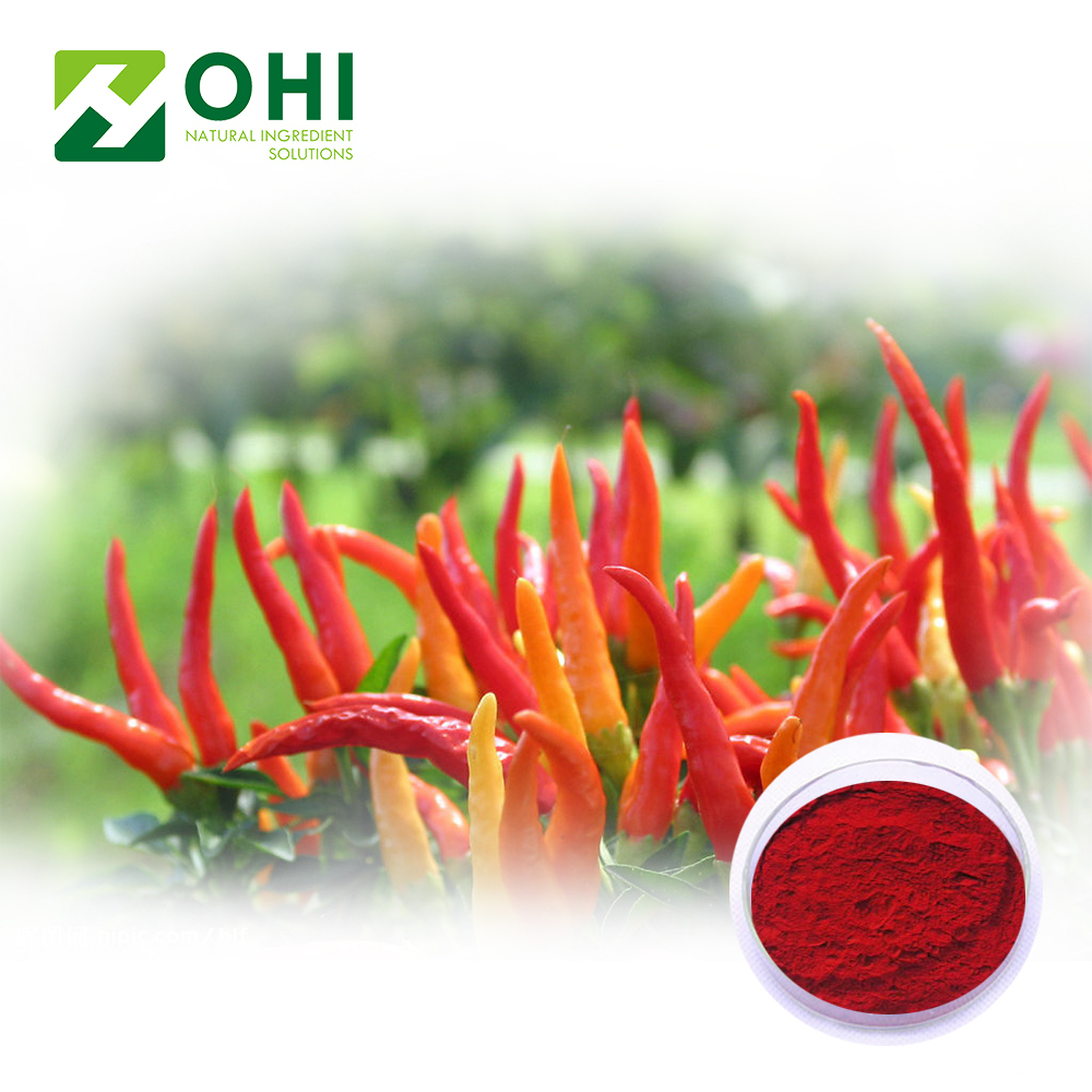 Capsicum Rood pigment Paprika Oleoresin Red Chilli Color