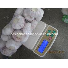 Neuer Ernte Normaler weißer Knoblauch 800g / 8kg Karton