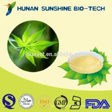 Чистый усилитель иммунной лекарства сладкий чай листья П. е. Rubusoside