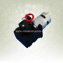 DC micro booster pump