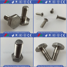 Săn bắn Tantali Flat Phillips Screw for Sale