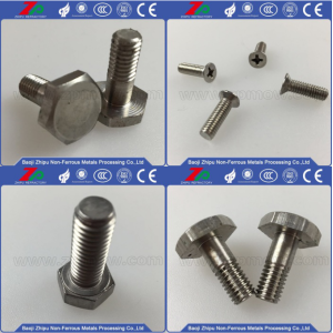Hunting Tantalum Flat Phillips Screw para Venda