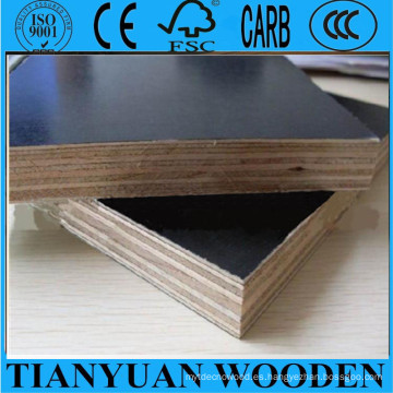 Film Faced Plywood Shuttering Contrachapado 18mm