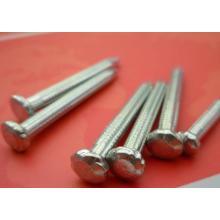 Fabricante de buena calidad Umbrella Concrete Nails