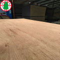 Keruing surface veneer plywood