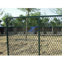 Expanded Fences Used for Playground (TS-L20)