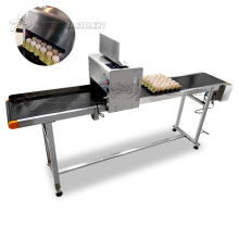 CE approved egg continuous inkjet coding machine/expiry date egg printing machine/egg printer with low price