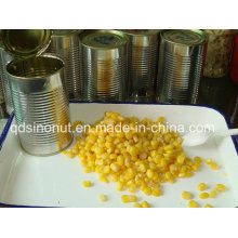 New Crop Canned Sweet Cron with Vacuum Packing