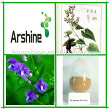 Médecine naturelle des herbes Pharmaophe multiflore