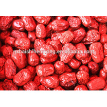 Jujube chino fechas rojas