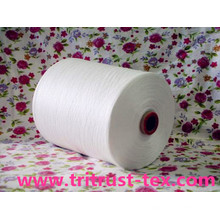 (3/60s) Spun Polyester Sewing Yarn