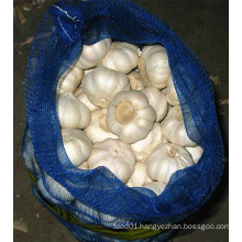 New Crop Pure White Garlic Supplier