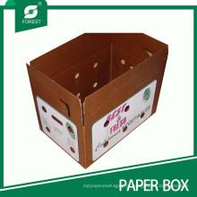 Embalagem de Cera Ondulada / Caixa de Transporte para Vegetais e Frutos do Mar