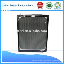 Hot Sale Foton Radiateur H0130020006A0