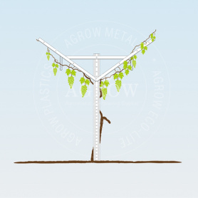 Vineyard Open Gable Systems
